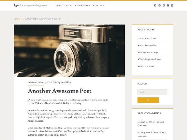 ignite wordpress tema gratis