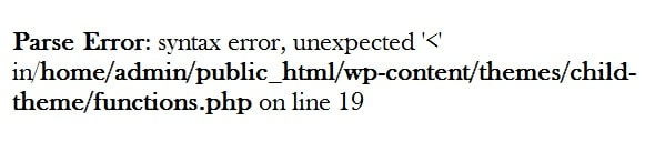 syntiax error wordpress